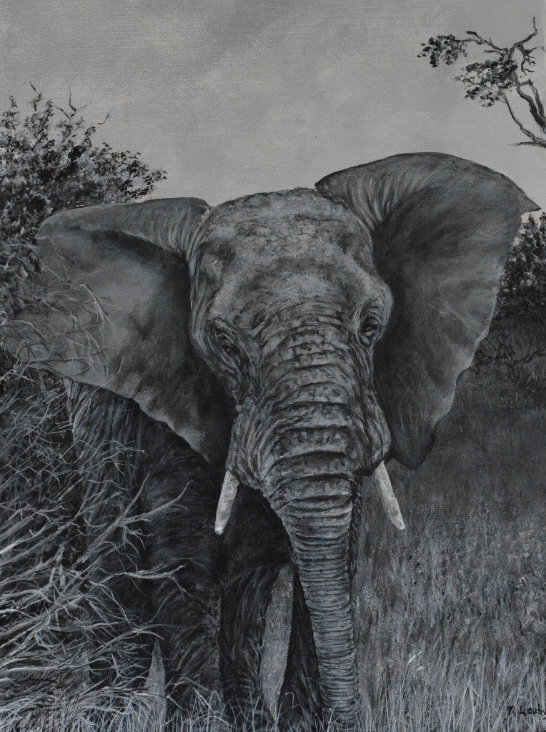 Elephant-African2-0189-3-2-14-1-of-1-764x1024