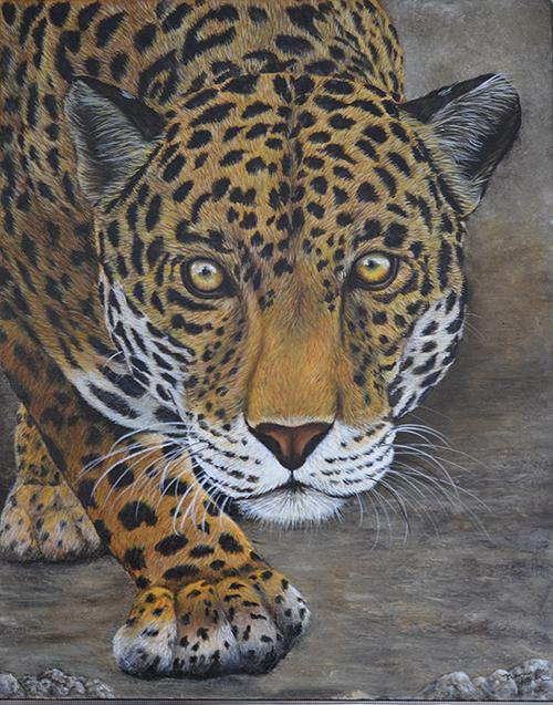 LeopardDSC_0016