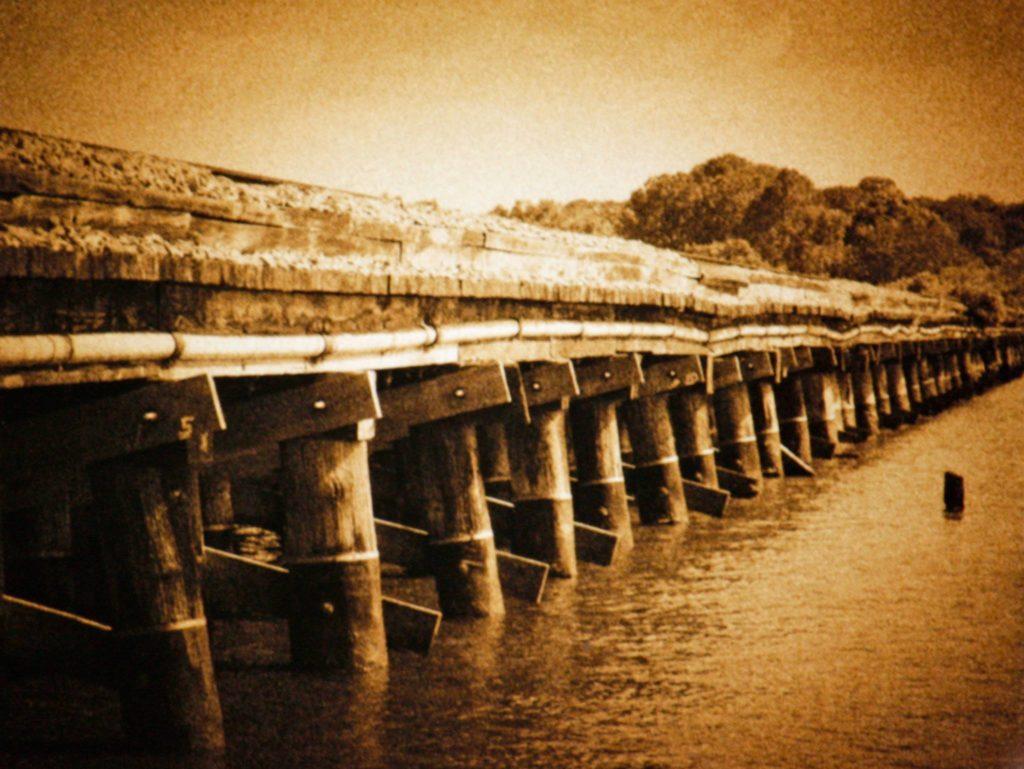 Tony Lauby 2nd -Safety Harbor Bridge-