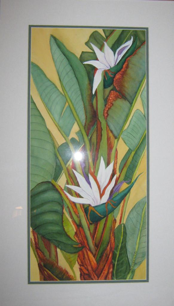 Bird of Paradise Treet #2