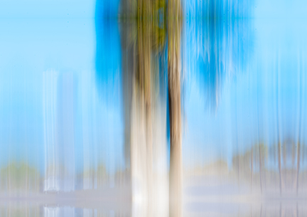 moving-trees-13-blue-brown